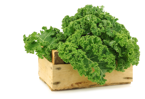 All Hail the Kale!  (and an amazing way to eat it)