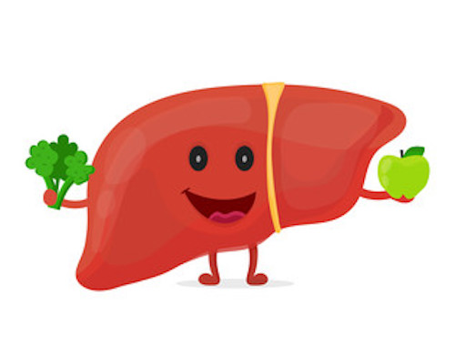 Top 10 tips to love your liver!