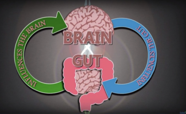 Gut-Brain Connection - the link between stress and IBS